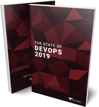 State of DevOps Report Flexagon