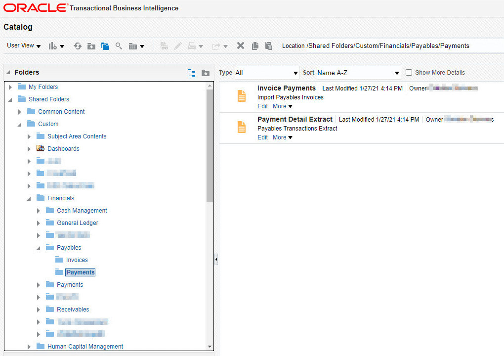 An OTBI project that Manages the WebCatalog Files